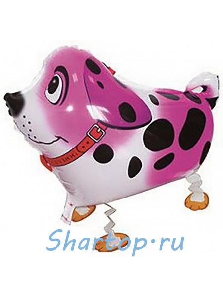 Ходячая фигура Собака Далматин, розовый  61см
